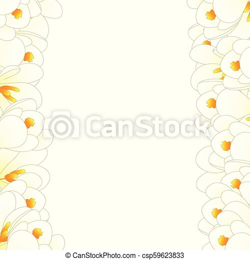 White crocus flower border vector illustration mightylinksfo