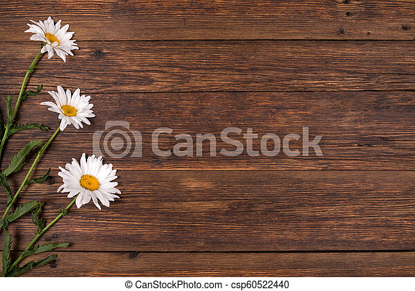 White Daisy Flowers On Wooden Background White Chamomile Flowers On Brown Background Blank Space On Wooden Board Canstock A wide variety of brown daisy flowers options are. https www canstockphoto com white daisy flowers on wooden background 60522440 html