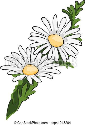White daisy flowers. White Daisy Flowers Clipart
