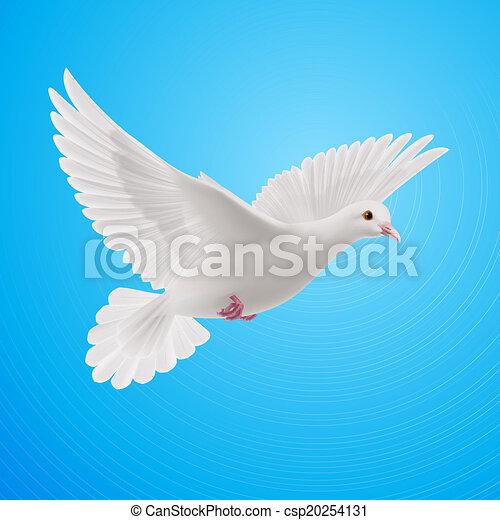 White Dove Realistic White Dove On Blue Sky Background Symbol Of