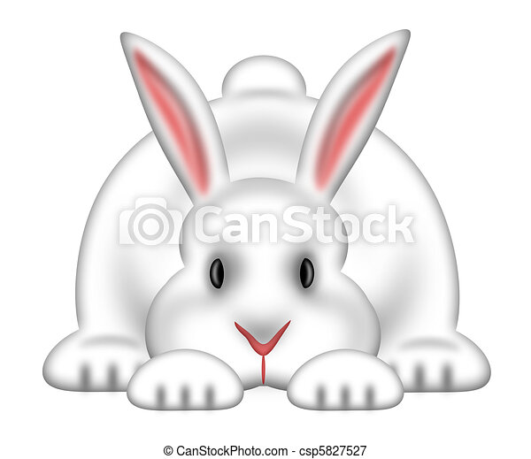 White Easter Bunny Isolated White Background - csp5827527