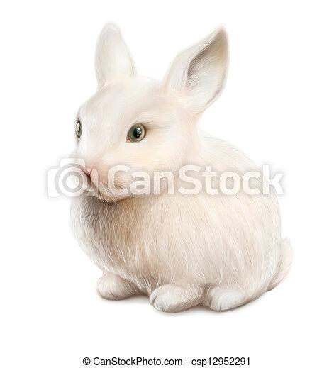 white easter rabbit - csp12952291