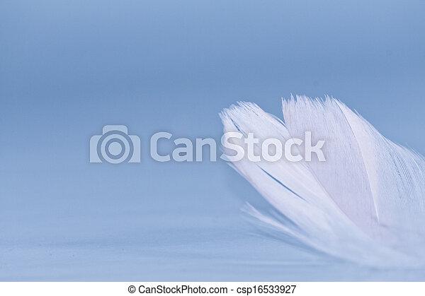 White Feather - csp16533927
