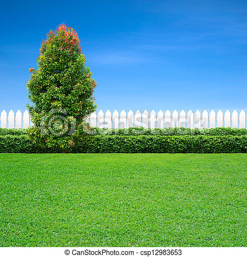 white fence and green tree - csp12983653