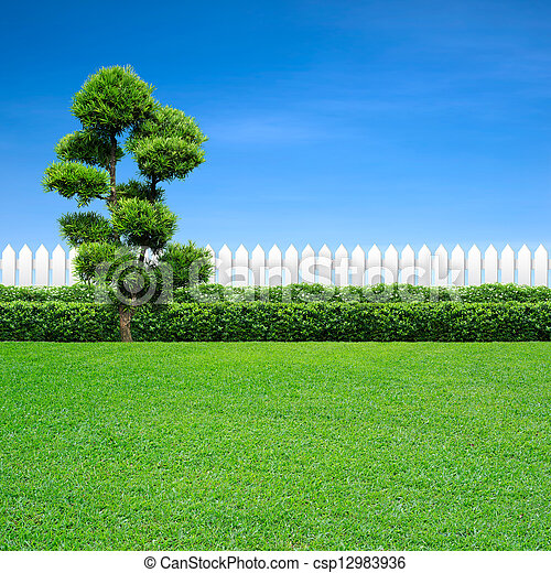 white fence and tree - csp12983936