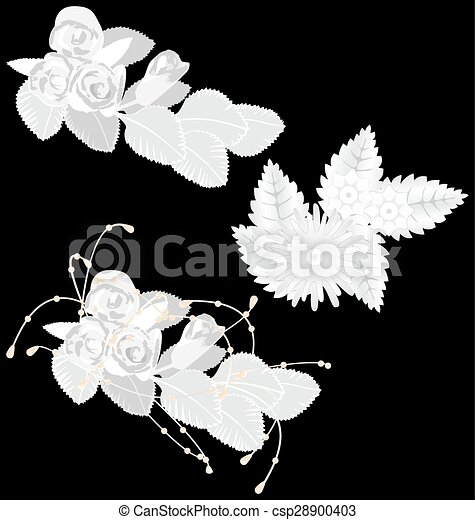 White flowers isolated on black - csp28900403