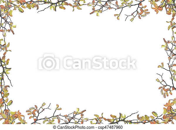 white frame with decorated floral borders white frame background with decorated nature flora design borders https www canstockphoto com white frame with decorated floral 47487960 html