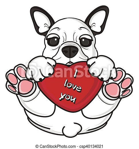 white french bulldog puppy french bulldog hold a red heart clip rh canstockphoto co uk french bulldog clipart free