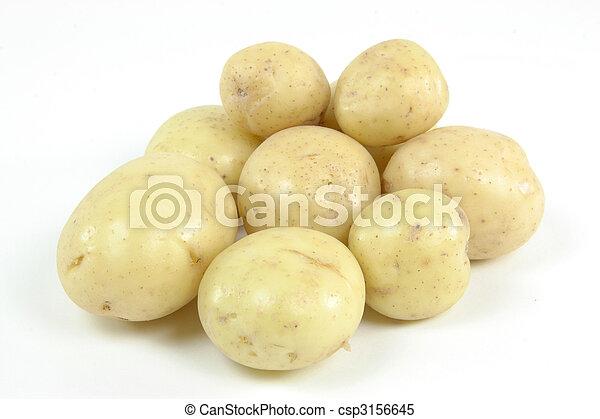 White fresh mini potatoes. - csp3156645
