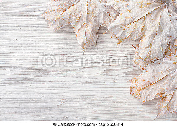 White leaves over wooden grunge background. Autumn maple - csp12550314