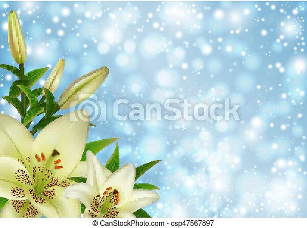 White lily flowers decoration - csp47567897