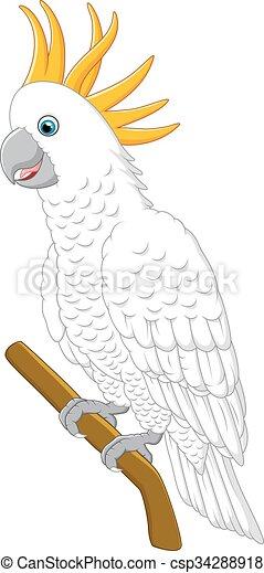 White parrot sitting - csp34288918