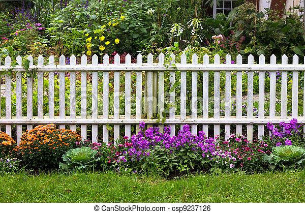 White Picket Fence - csp9237126