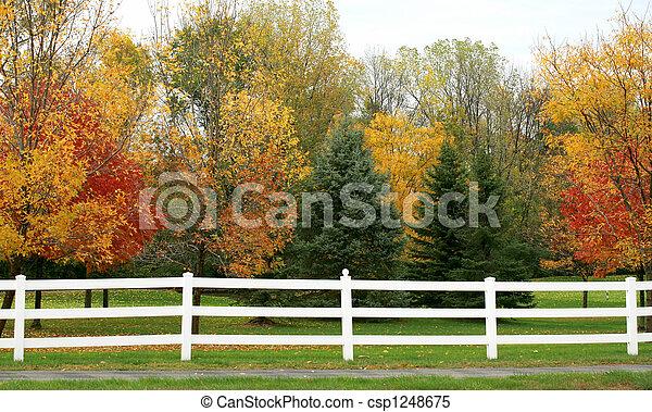 White Picket Fence - csp1248675
