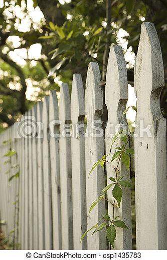 White picket fence. - csp1435783