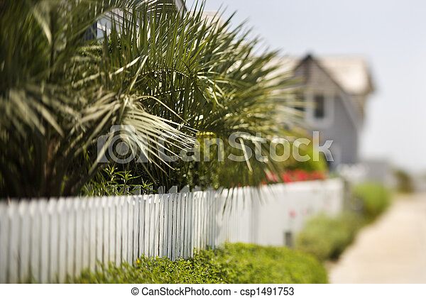White picket fence with palms. - csp1491753