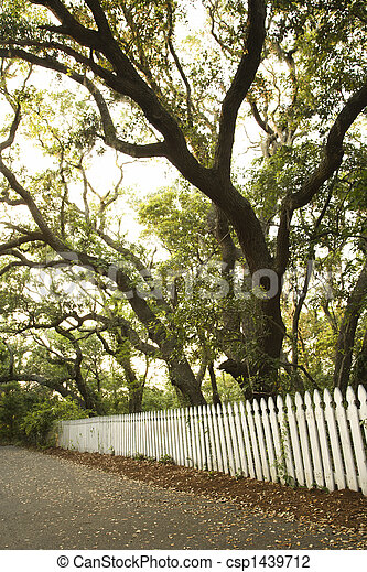 White picket fence with trees. - csp1439712