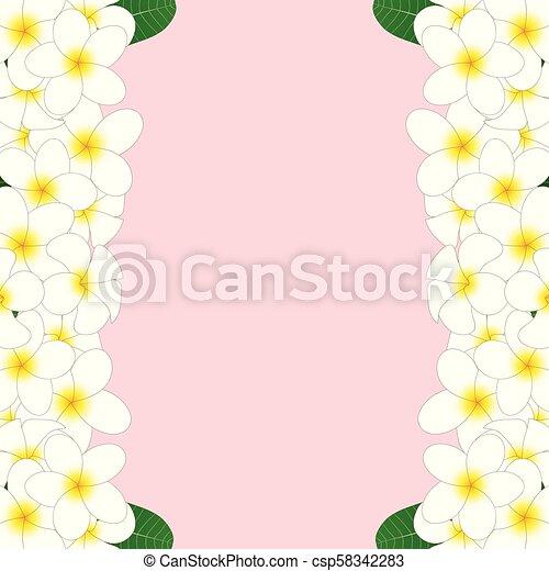 Plumeria Border Clip Art