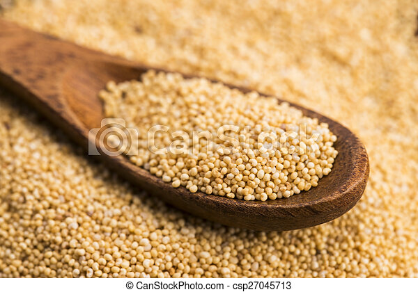 White poppy seeds - csp27045713