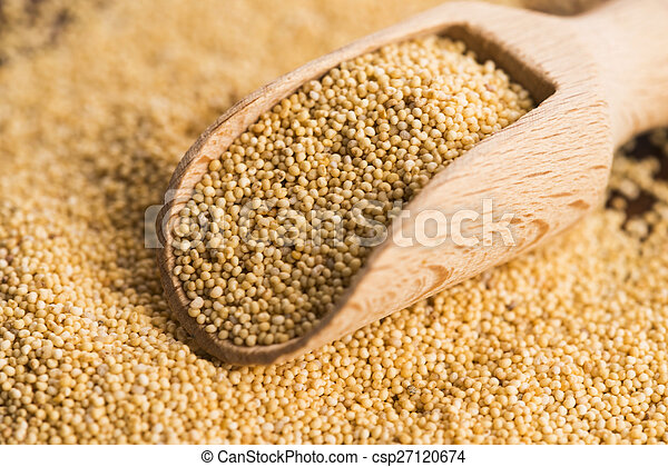 White poppy seeds - csp27120674