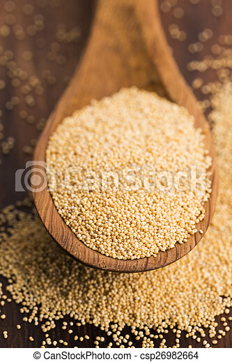 White poppy seeds - csp26982664