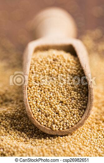White poppy seeds - csp26982651