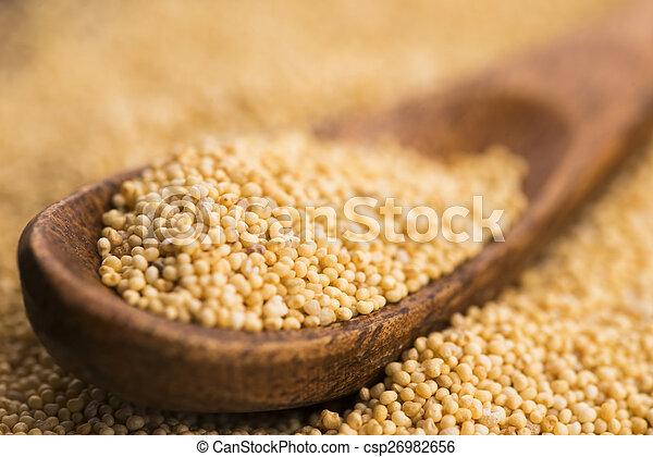 White poppy seeds - csp26982656