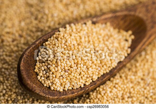White poppy seeds - csp26983056
