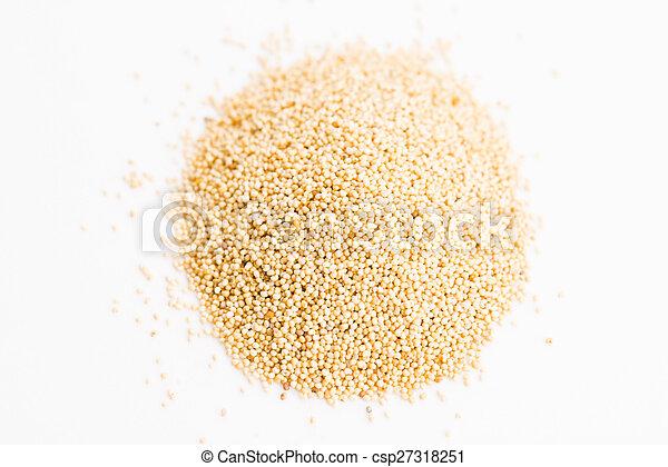 White poppy seeds - csp27318251