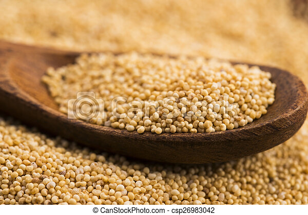 White poppy seeds - csp26983042