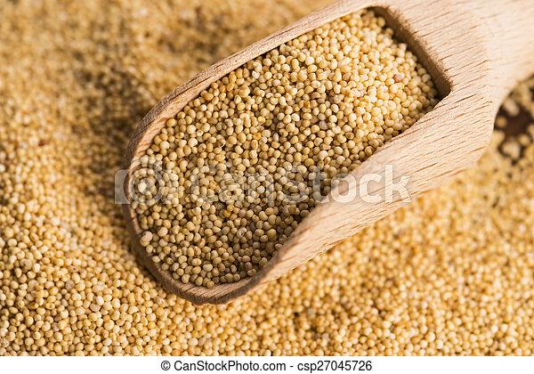 White poppy seeds - csp27045726