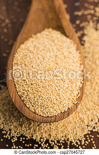 White poppy seeds - csp27045727
