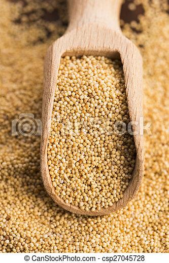 White poppy seeds - csp27045728