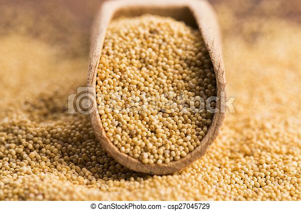 White poppy seeds - csp27045729