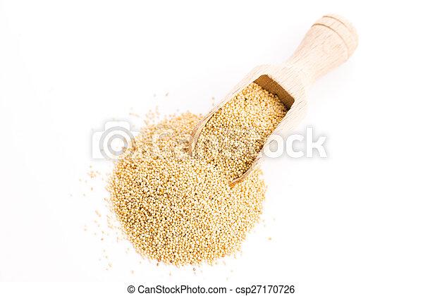 White poppy seeds - csp27170726