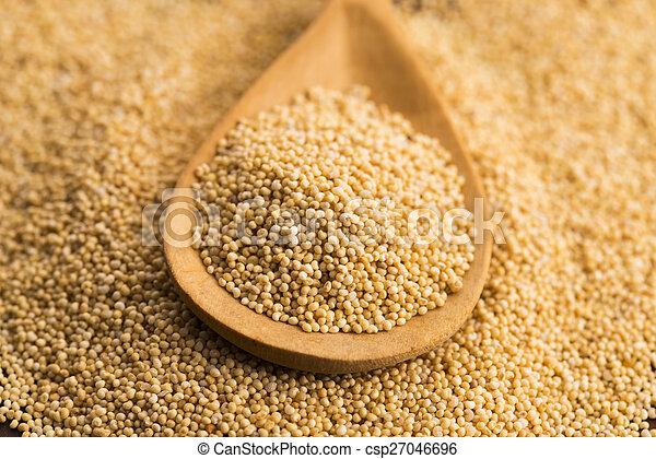 White poppy seeds - csp27046696