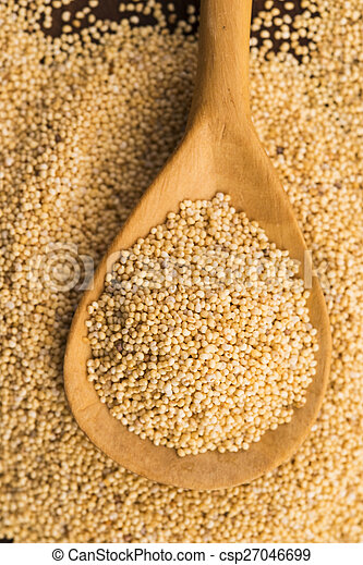 White poppy seeds - csp27046699