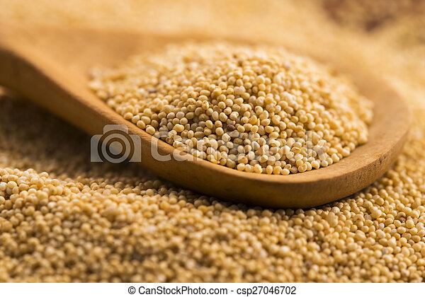 White poppy seeds - csp27046702