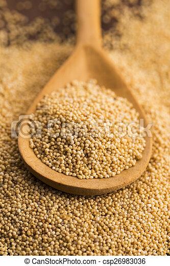 White poppy seeds - csp26983036