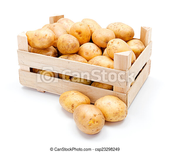 White potatoes in wooden crate - csp23298249