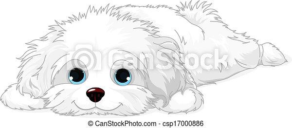 White Puppy - csp17000886