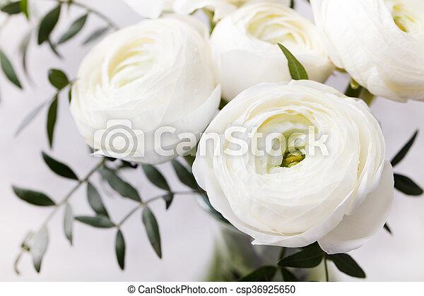 White ranunculus flowers in vase grey background white ranunculus white ranunculus flowers in vase grey background csp36925650 mightylinksfo