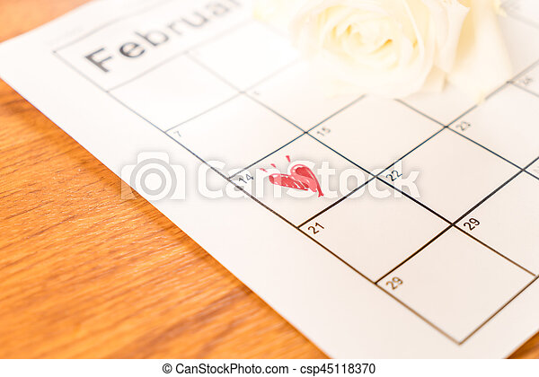 white rose on the calendar with the date of February 14 Valentine\'s day - soft focus effect picture