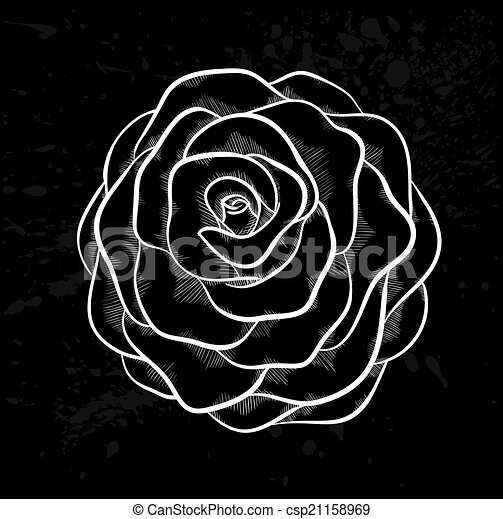 white rose outline with gray spots on a black background. - csp21158969