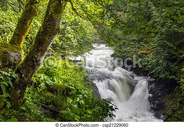 White Salmon River Falls - csp21229060