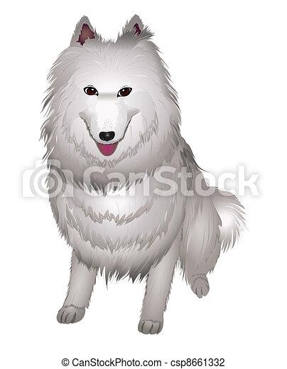 White Samoyed Dog Smiles Vector Illustration Eps 10