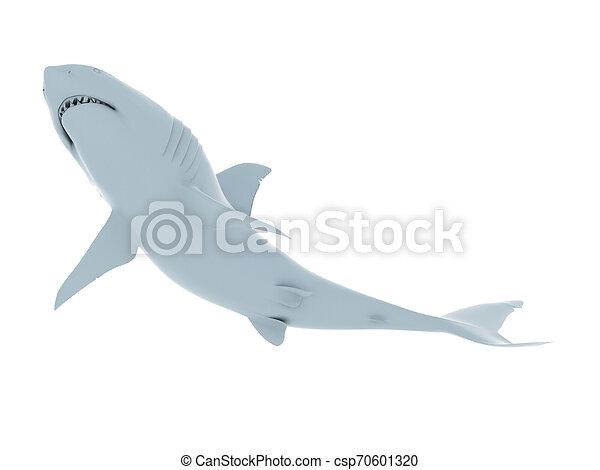 white shark - csp70601320