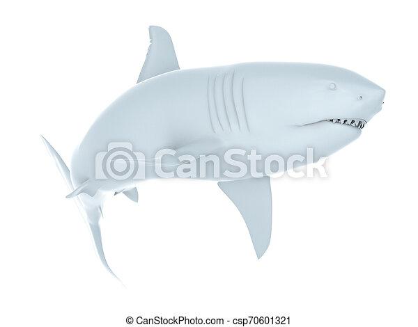 white shark - csp70601321