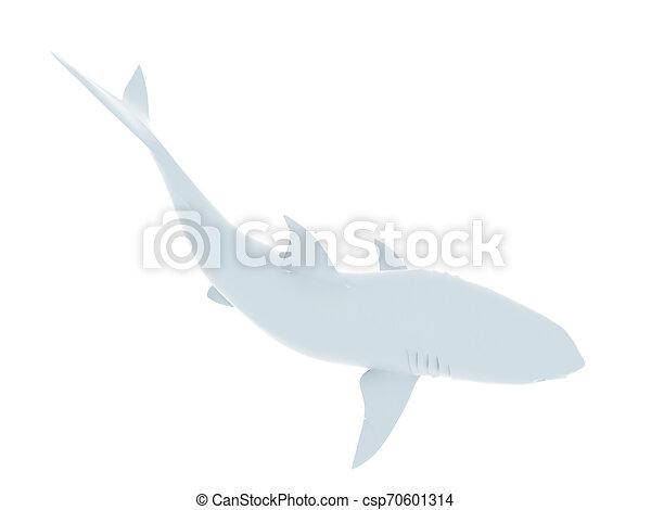 white shark - csp70601314