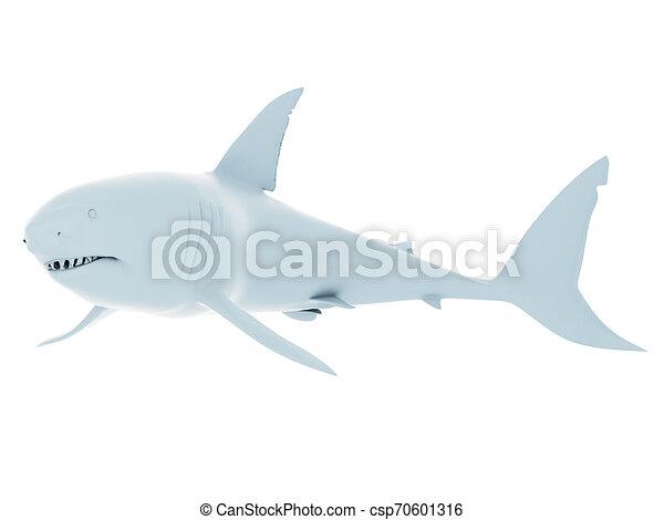 white shark - csp70601316